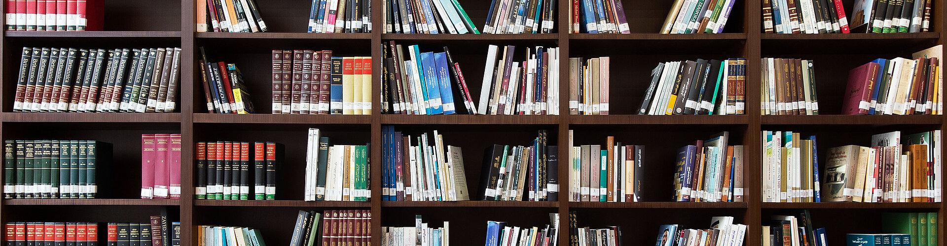 Bibliotheksregal gefüllt mit Büchern